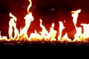 Fireplace Screensaver 1.2