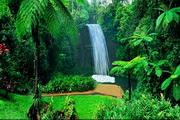 Queensland Waterfall 3.0