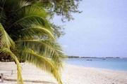 Beach Scenes 3.0