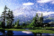 Mountain Rainier Snow
