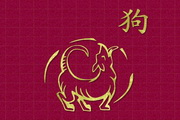 Chinese Zodiac Free Screensaver