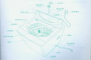 三洋XQB60-586A洗衣机使用说明书