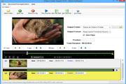 Free Video Cutter Expert 2.5