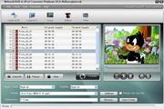 Nidesoft DVD to iPod Converter Platinum 5.6.28