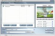 Nidesoft FLV converter 2.3.48