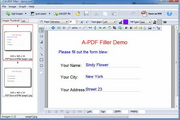 A-PDF Filler 2.5