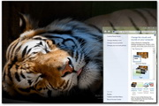 Tiger Windows Theme