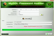 Mysql Password Auditor