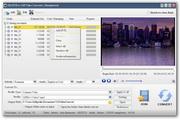UM DVD to 3GP Video Converter
