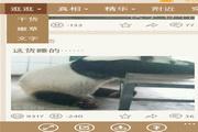糗事百科 For WP 3.0.2.0