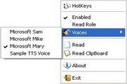 Screen Reader 2.2.1.0