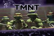 忍者神龟2007...