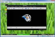 开源播放器 SMPl...