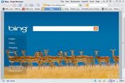 Avant Browser Lite 2016 Build 8
