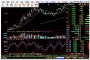 华安证券网上交易软件