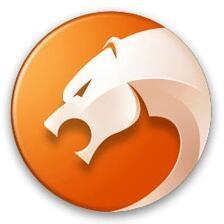 猎豹安全浏览器...