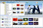 Photo DVD Maker 8.1 英文版