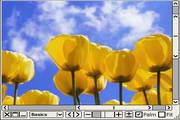 Moo0 ImageViewer 1.80