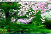 赛娜种植业管理系统 2016