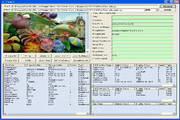 GOGO Exif Image Viewer Pro ActiveX OCX 2.81
