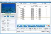 Joboshare DVD to MP4 Converter 3.5.5.0506