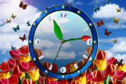 Tulip Clock ScreenSaver
