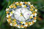 Love Flower Clock ScreenSaver