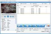 Joboshare DVD to Pocket PC Ripper 3.5.1.0503