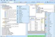 Database .NET4