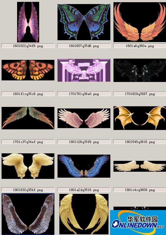 100个翅膀素材打包