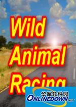 野生动物赛车...