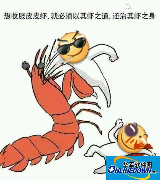皮皮虾的故事表情图片大全