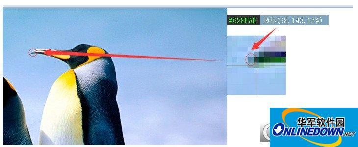 赏色(Windows屏幕取色器)