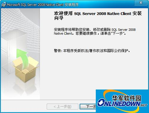Microsoft SQL Server 2008 Native Client
