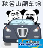 熊猫头恶搞表情包