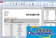 SmartVizor对账单保险单制作打印系统