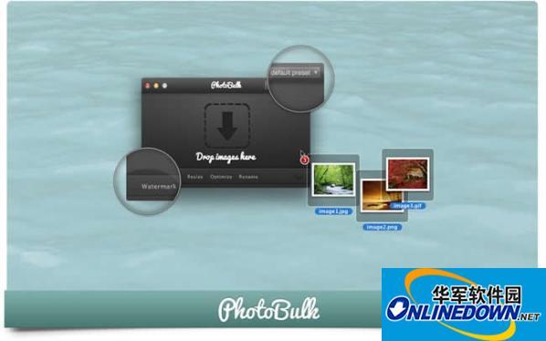 photobulk