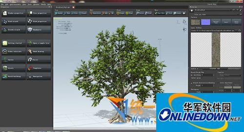 SpeedTree Cinema三维树木建模生长动画软件