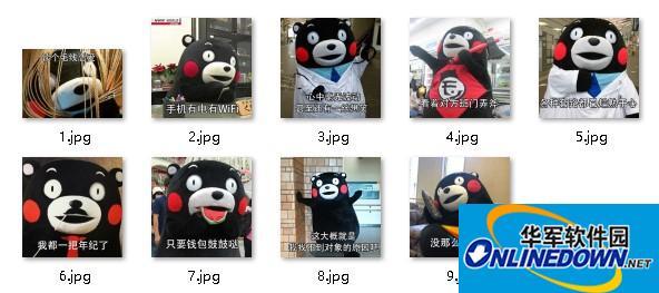 熊本熊单身的原因表情包