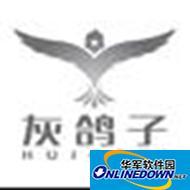 灰鸽子局域网远程监控软件 1.0