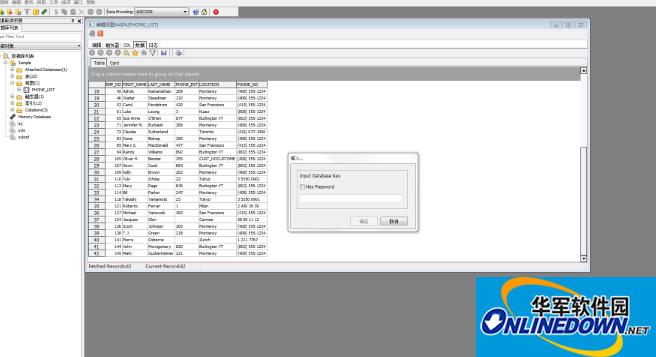 SQLite Developer破解注册版