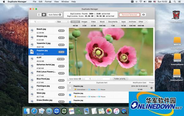 Duplicate Manager Pro Mac版