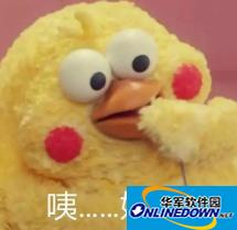 黄金脆皮鸡表情包