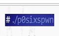 p0sixspwn(苹果6.1.3完美越狱工具)