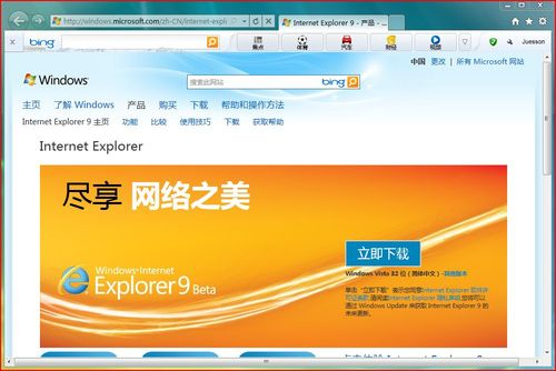 IE9 (Internet explorer 9)
