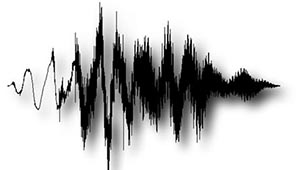 audio是什么意思