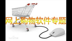 網上購物軟件專題
