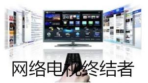网络电视终结者专区