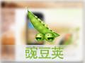 豌豆荚电脑版(豌豆荚手机助手)