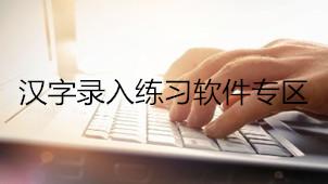 汉字录入练习专题